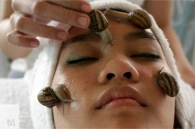 Here is the Beauty Secret: Thai Girls get Snail Facials to look younger