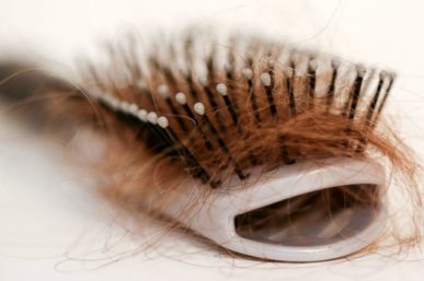 Hair Shedding Causes & Facts